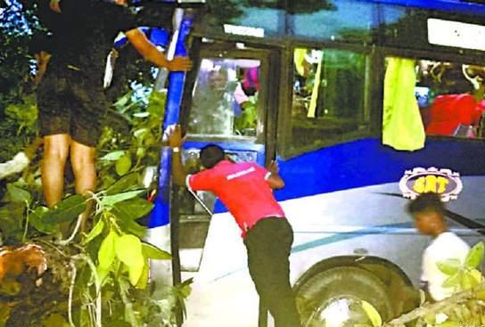 दुर्घटना! श्रद्वालुओं से भरी बस पर बरगद का पेड़ गिरने से दो श्रद्वालुओं की मौत, छह घायल
