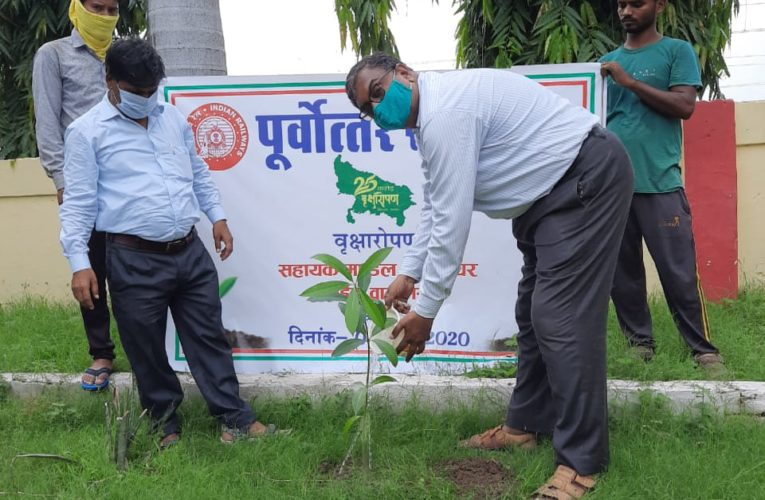 रेलवे ! पर्यावरण संरक्षण हेतु 9250 पौधों का किया पौधारोपण