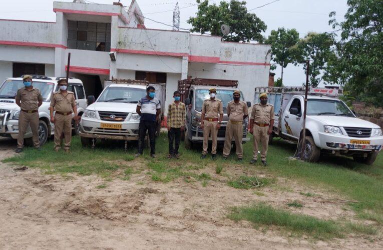 बाइस गो वंश, चार वाहन सहित दो तस्कर गिरफ्तार
